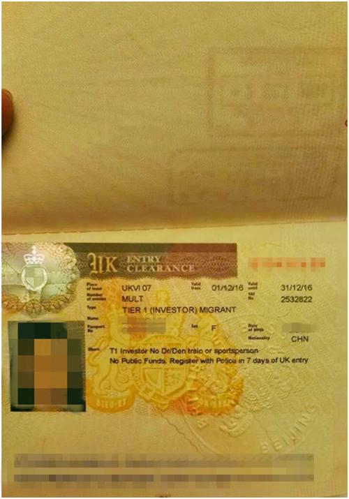 英国移民案例