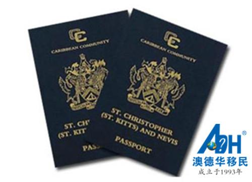 【优势】护照移民的优势及其特点